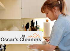 Domestic Cleaners SW3