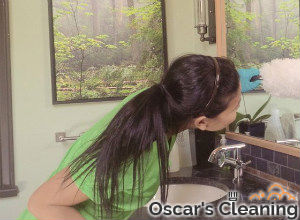 cleaning-the-bathroom-chelsea
