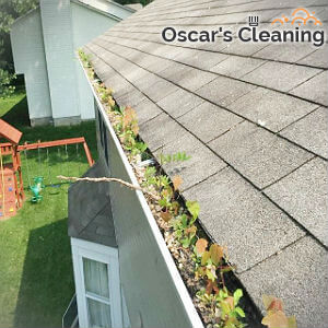 reliable-gutter-cleaning-chelsea